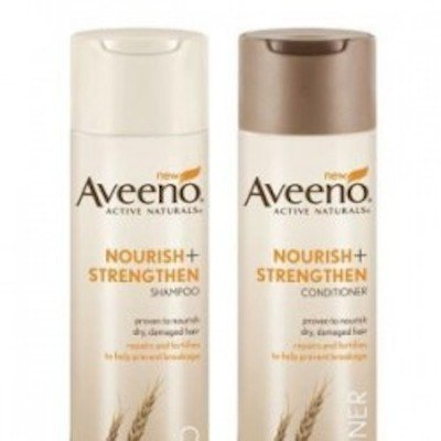 Oil Change Coupons >> Aveeno Shampoo and Conditioner $3 off Printable Coupon